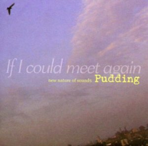푸딩(Pudding) / 1집-If I Could Meet Again