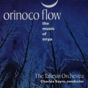 Taliesin Orchestra / Orinoco Flow: Music of Enya