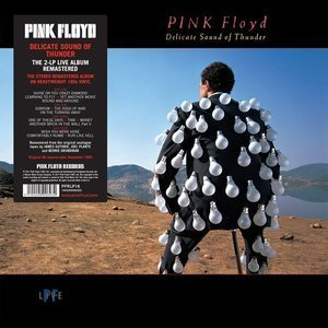 [LP] Pink Floyd / Delicate Sound Of Thunder: Live (2016 Reissue, 2LP, 180g, 미개봉)